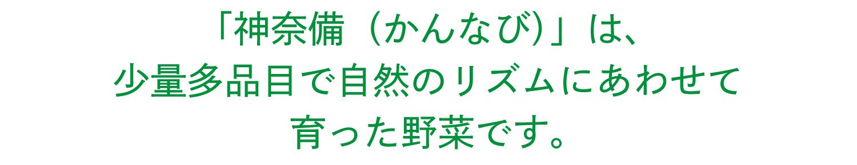 「神奈備(かんなび)」は、少量多品目で自然のリズムにあわせて育った野菜です。